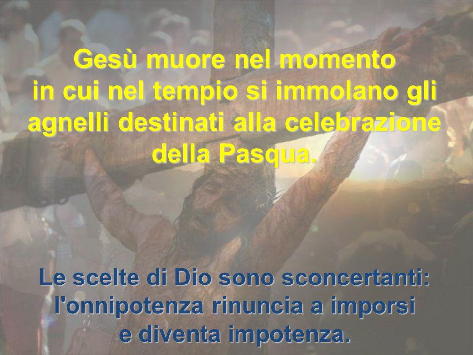 Il Servo del Signore attua la missione di liberare il popolo dai peccati: come agnello senza macchia, carico dei delitti del suo popolo, si lascia con