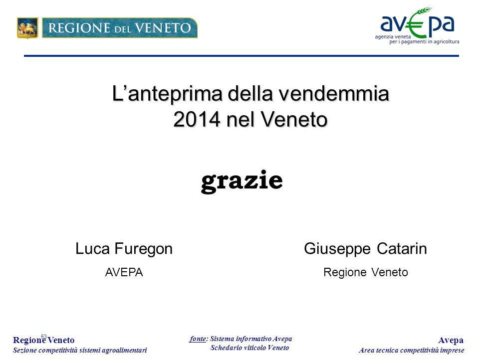 53 Regione Veneto Sezione competitività sistemi agroalimentari fonte: Sistema informativo Avepa Schedario viticolo Veneto L'anteprima della vendemmia