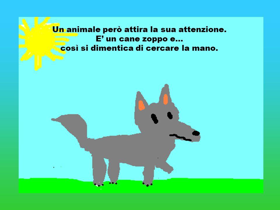 Un animale però attira la sua attenzione. E' un cane zoppo e… così si dimentica di cercare la mano.