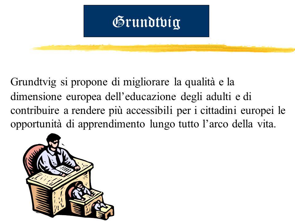 Grundtvig Grundtvig si propone di migliorare la qualità e la dimensione europea dell'educazione degli adulti e di contribuire a rendere più accessibili per i cittadini europei le opportunità di apprendimento lungo tutto l'arco della vita.