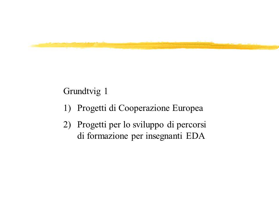 Grundtvig 1 1)Progetti di Cooperazione Europea 2)Progetti per lo sviluppo di percorsi di formazione per insegnanti EDA