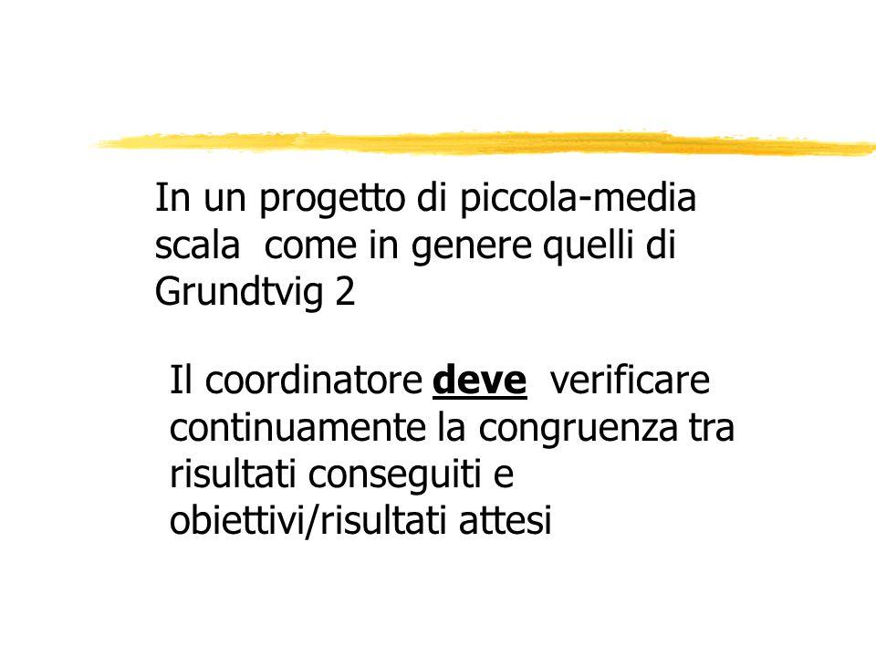 In un progetto di piccola-media scala come in genere quelli di Grundtvig 2 Il coordinatore deve verificare continuamente la congruenza tra risultati conseguiti e obiettivi/risultati attesi