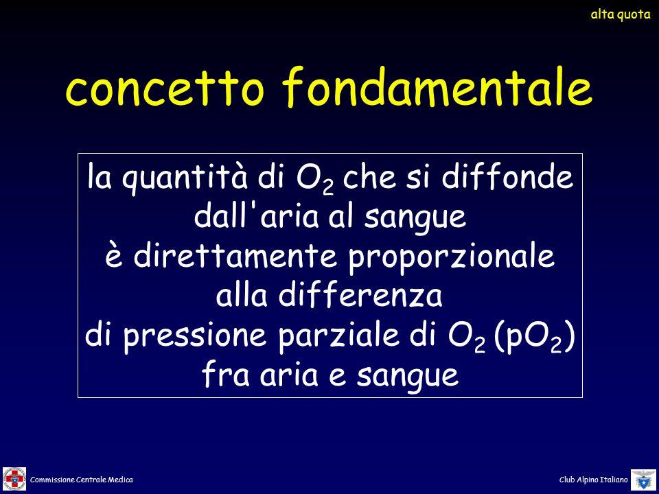 Commissione Centrale Medica Club Alpino Italiano la quantità di O 2 che si diffonde dall'aria al sangue è direttamente proporzionale alla differenza d