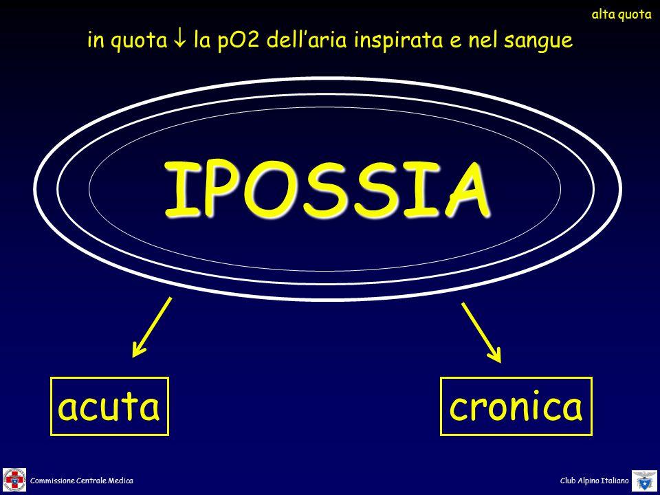 Commissione Centrale Medica Club Alpino Italiano IPOSSIA acutacronica alta quota in quota  la pO2 dell'aria inspirata e nel sangue
