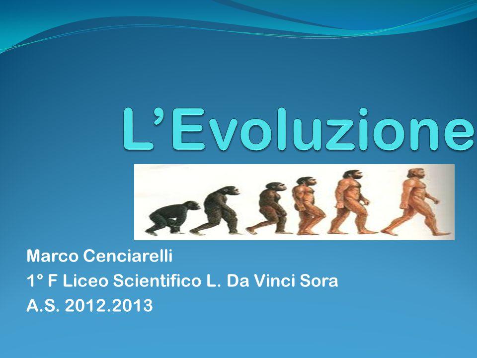 Marco Cenciarelli 1° F Liceo Scientifico L. Da Vinci Sora A.S. 2012.2013