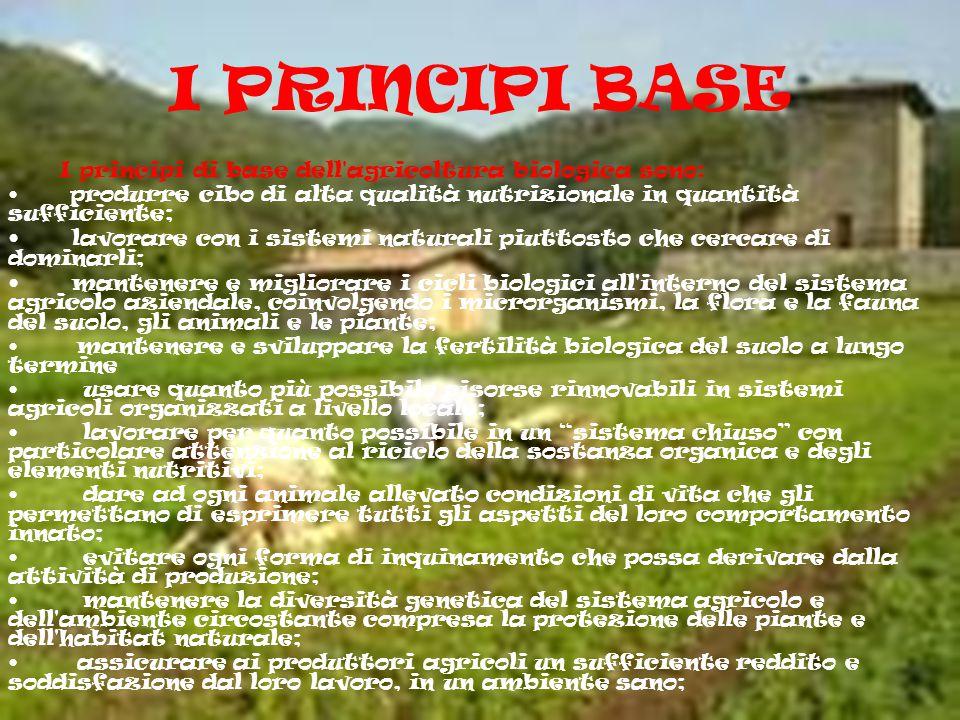 LE MICOTOSSINE Una diffusa idea sul cibo biologico vuole che essi presentino una presenza più elevata di micotossine,sostanze naturali ad azione tossi