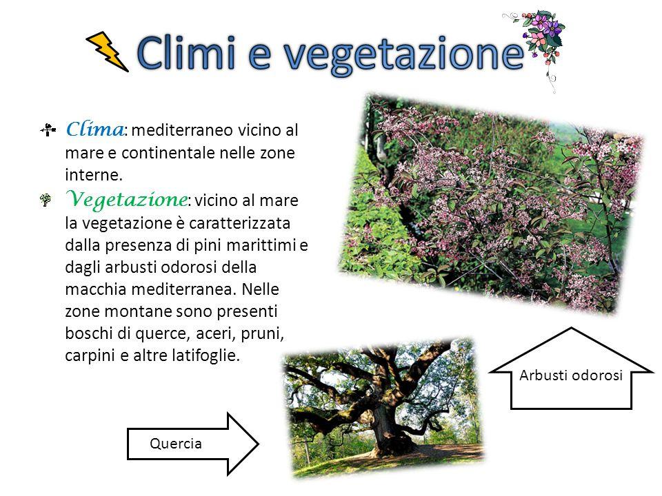 Clima : mediterraneo vicino al mare e continentale nelle zone interne. Vegetazione : vicino al mare la vegetazione è caratterizzata dalla presenza di