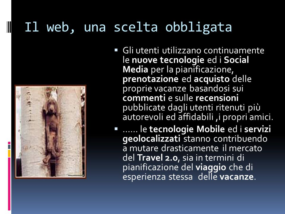 Il web, una scelta obbligata  Gli utenti utilizzano continuamente le nuove tecnologie ed i Social Media per la pianificazione, prenotazione ed acquis