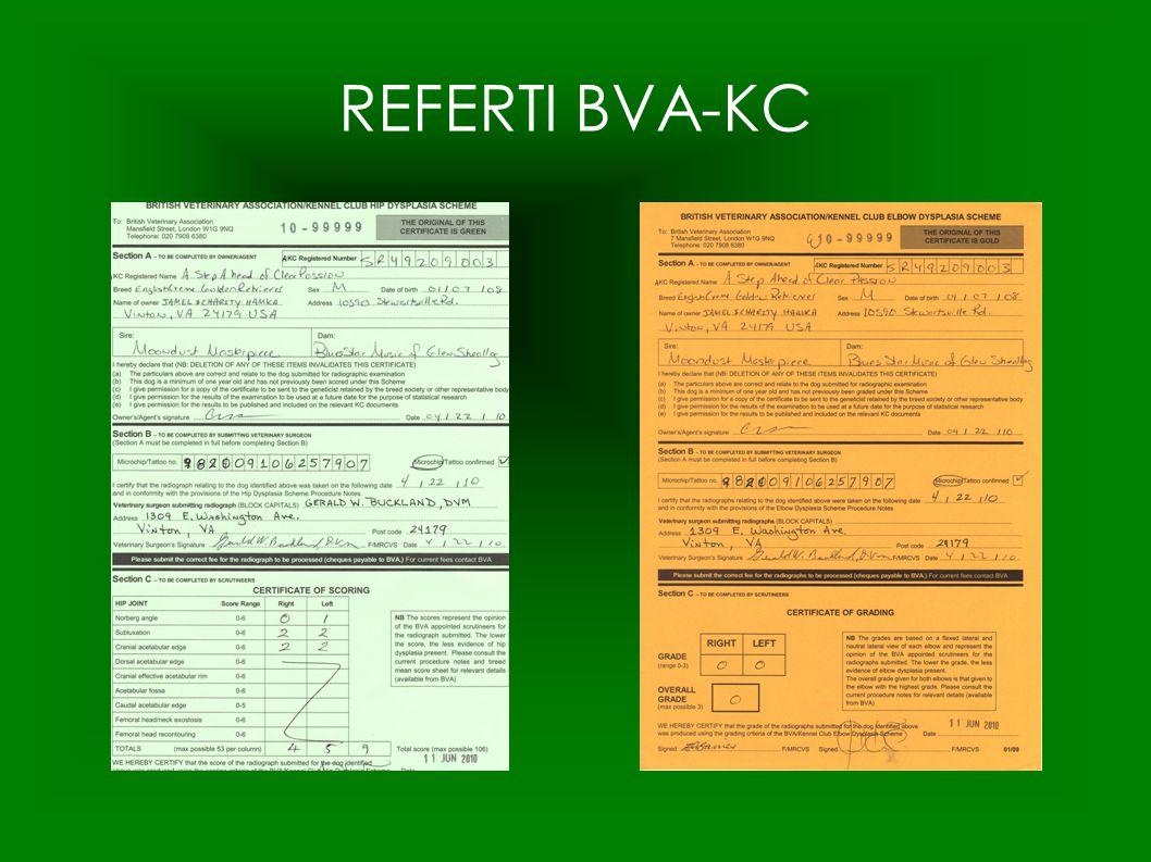 REFERTI BVA-KC