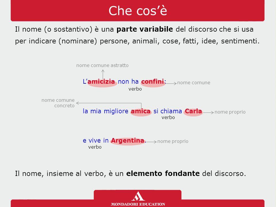 Che cos'è Il nome (o sostantivo) è una parte variabile del discorso che si usa per indicare (nominare) persone, animali, cose, fatti, idee, sentimenti.