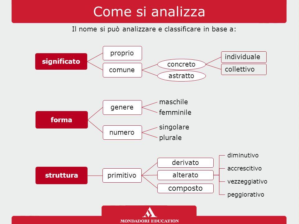 Come si analizza significato propriocomune concreto individualecollettivo astratto forma genere maschilefemminile numero singolareplurale Il nome si può analizzare e classificare in base a:
