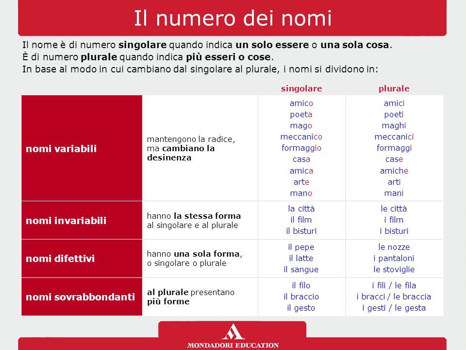 La struttura dei nomi nome primitivoè il nome che non deriva da nessun'altra parola.