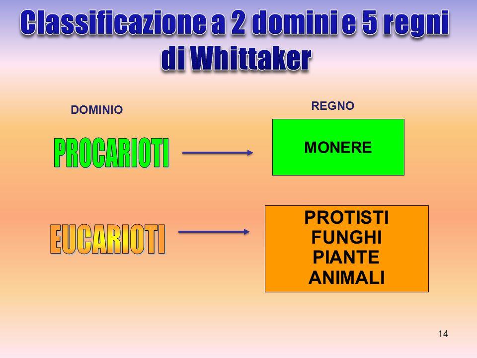 MONERE PROTISTI FUNGHI PIANTE ANIMALI DOMINIO REGNO 14