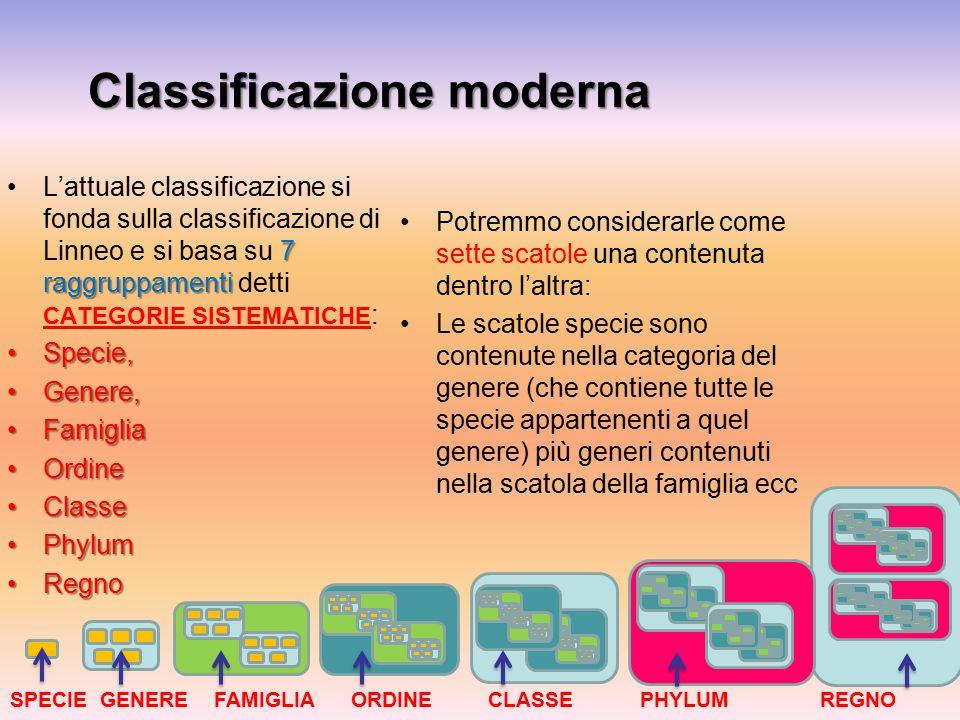 Classificazione moderna 7 raggruppamentiL'attuale classificazione si fonda sulla classificazione di Linneo e si basa su 7 raggruppamenti detti CATEGOR