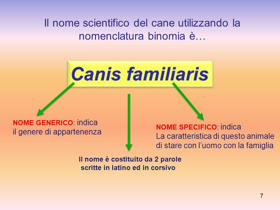 Il nome scientifico del cane utilizzando la nomenclatura binomia è… 7 NOME GENERICO: indica il genere di appartenenza NOME SPECIFICO: indica La caratt