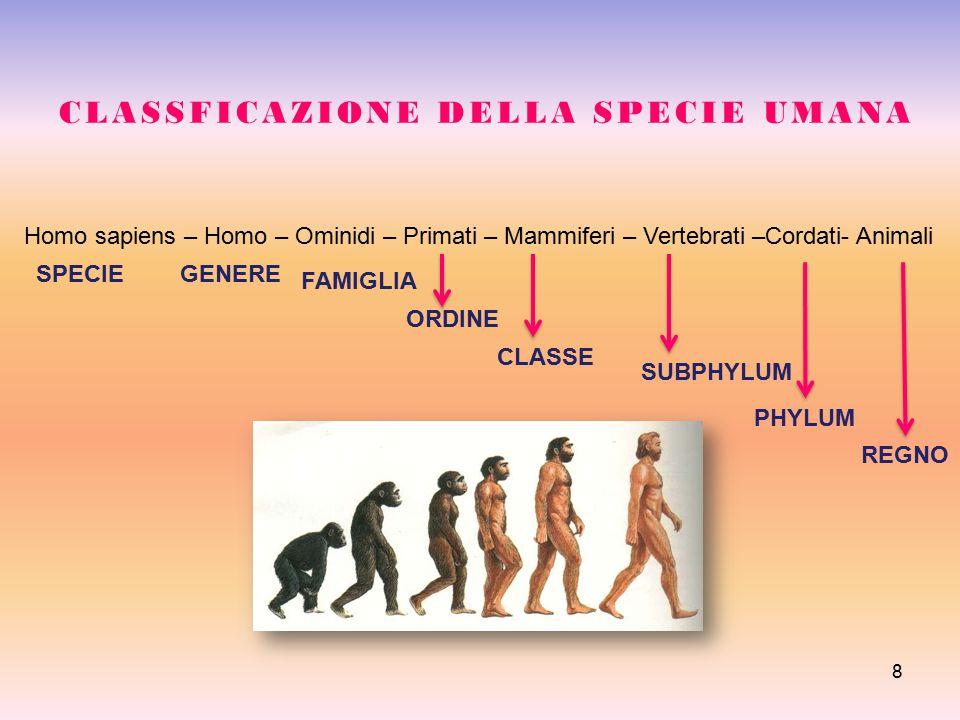 8 CLASSFICAZIONE DELLA SPECIE UMANA Homo sapiens – Homo – Ominidi – Primati – Mammiferi – Vertebrati –Cordati- Animali SPECIEGENERE FAMIGLIA ORDINE CL