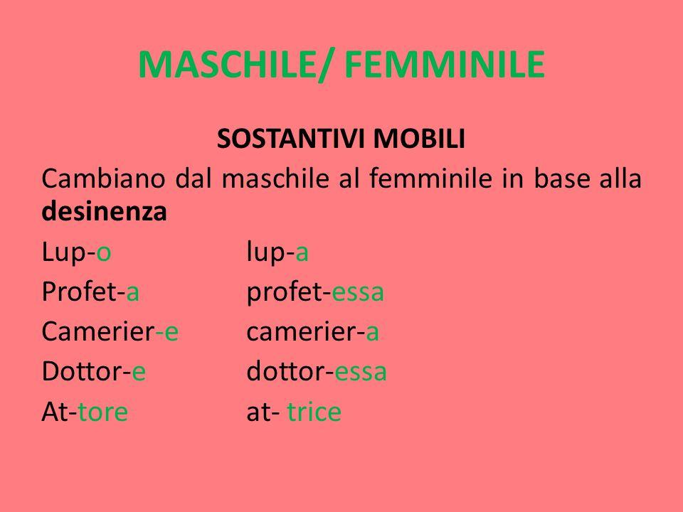 MASCHILE/ FEMMINILE SOSTANTIVI MOBILI Cambiano dal maschile al femminile in base alla desinenza Lup-o lup-a Profet-aprofet-essa Camerier-ecamerier-a Dottor-edottor-essa At-toreat- trice
