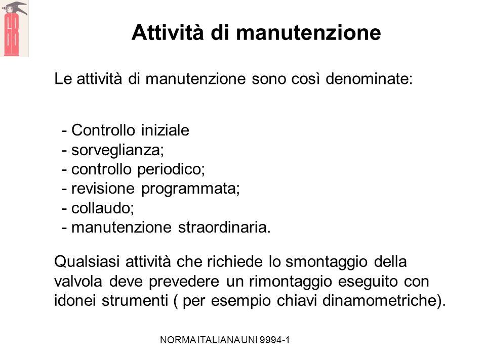 NORMA ITALIANA UNI 9994-1 Attività di manutenzione Le attività di manutenzione sono così denominate: - Controllo iniziale - sorveglianza; - controllo