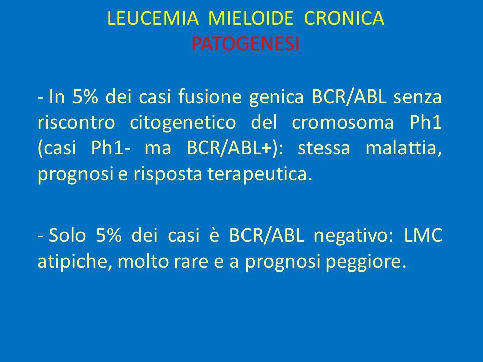 LEUCEMIA MIELOIDE CRONICA: TERAPIA Interferone   citosina arabinoside - Risposte citogenetiche maggiori: 20 – 50 %, risposte complete 10 – 30 % ; - risposte complete durature solo nei casi a basso rischio.