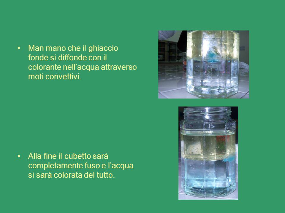 Man mano che il ghiaccio fonde si diffonde con il colorante nell'acqua attraverso moti convettivi. Alla fine il cubetto sarà completamente fuso e l'ac