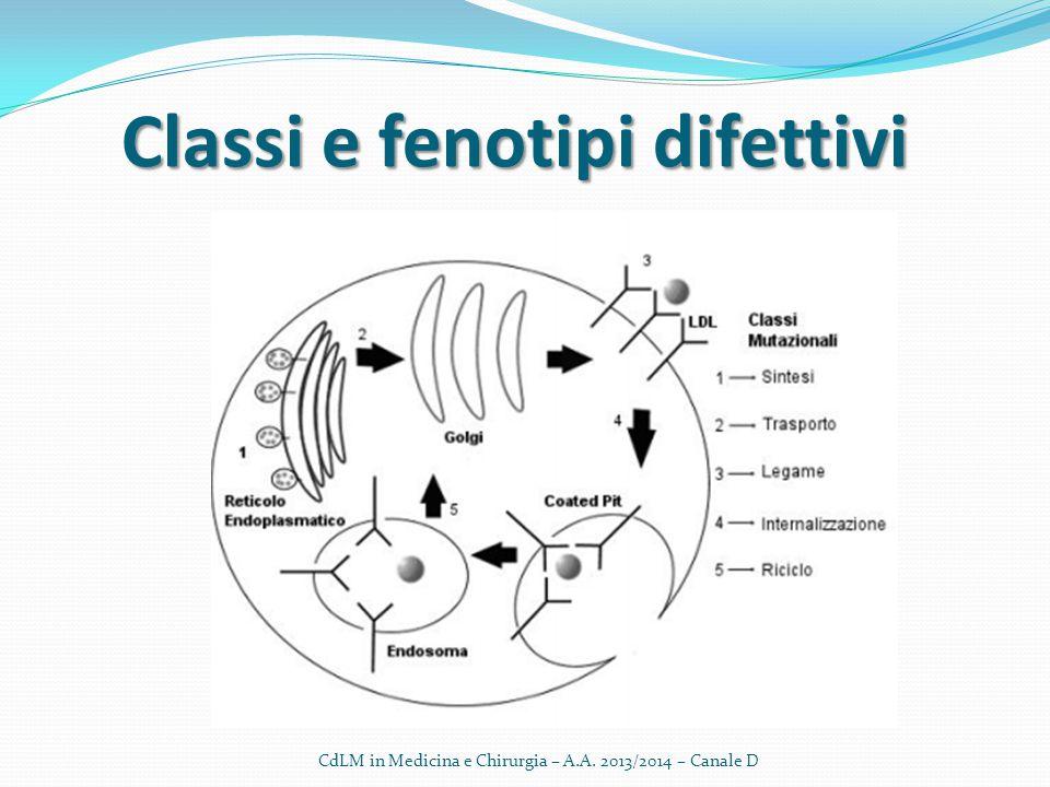 CdLM in Medicina e Chirurgia – A.A. 2013/2014 – Canale D Classi e fenotipi difettivi