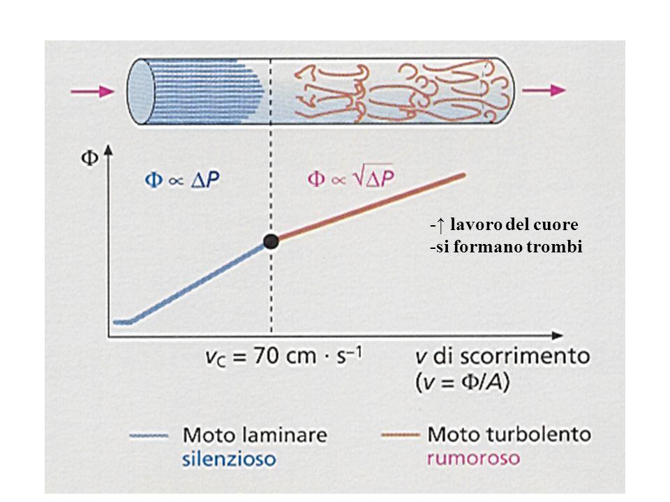 Stenosi del vaso ↑velocità (placche aterosclerotiche)