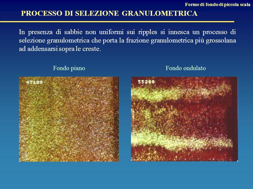 PROCESSO DI SELEZIONE GRANULOMETRICA In presenza di sabbie non uniformi sui ripples si innesca un processo di selezione granulometrica che porta la frazione granulometrica più grossolana ad addensarsi sopra le creste.