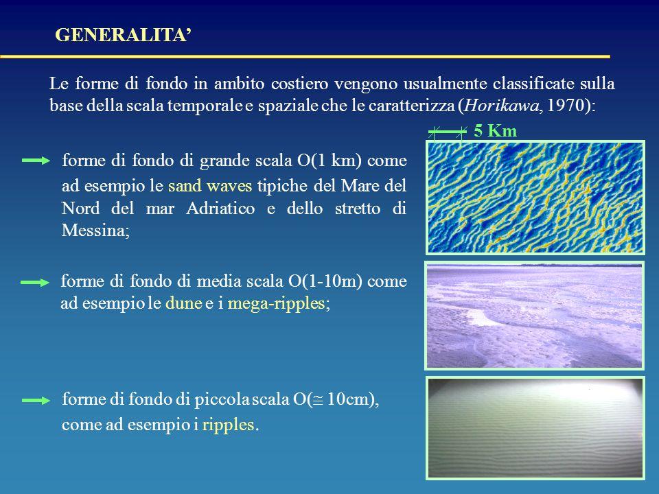 Le forme di fondo in ambito costiero vengono usualmente classificate sulla base della scala temporale e spaziale che le caratterizza (Horikawa, 1970): forme di fondo di piccola scala O(  10cm), come ad esempio i ripples.