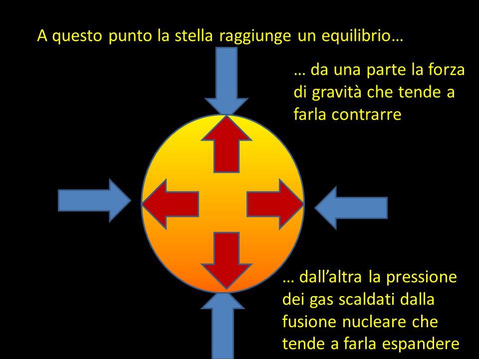 A questo punto la stella raggiunge un equilibrio… … da una parte la forza di gravità che tende a farla contrarre … dall'altra la pressione dei gas scaldati dalla fusione nucleare che tende a farla espandere