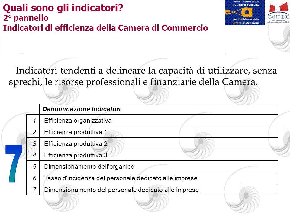 Quali sono gli indicatori? 2° pannello Indicatori di efficienza della Camera di Commercio Indicatori tendenti a delineare la capacità di utilizzare, s