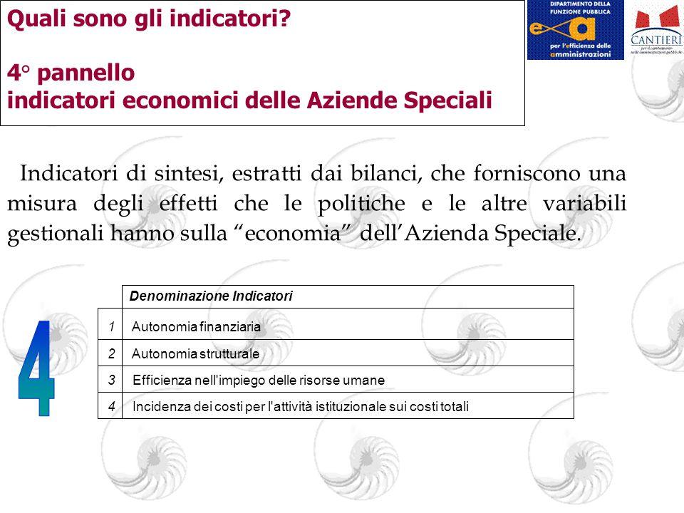 Quali sono gli indicatori? 4° pannello indicatori economici delle Aziende Speciali Indicatori di sintesi, estratti dai bilanci, che forniscono una mis