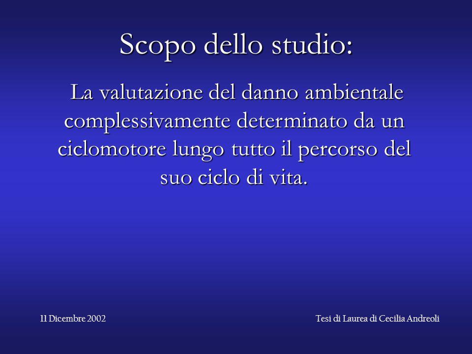 11 Dicembre 2002Tesi di Laurea di Cecilia Andreoli Scopo dello studio: Scopo dello studio: La valutazione del danno ambientale complessivamente determ