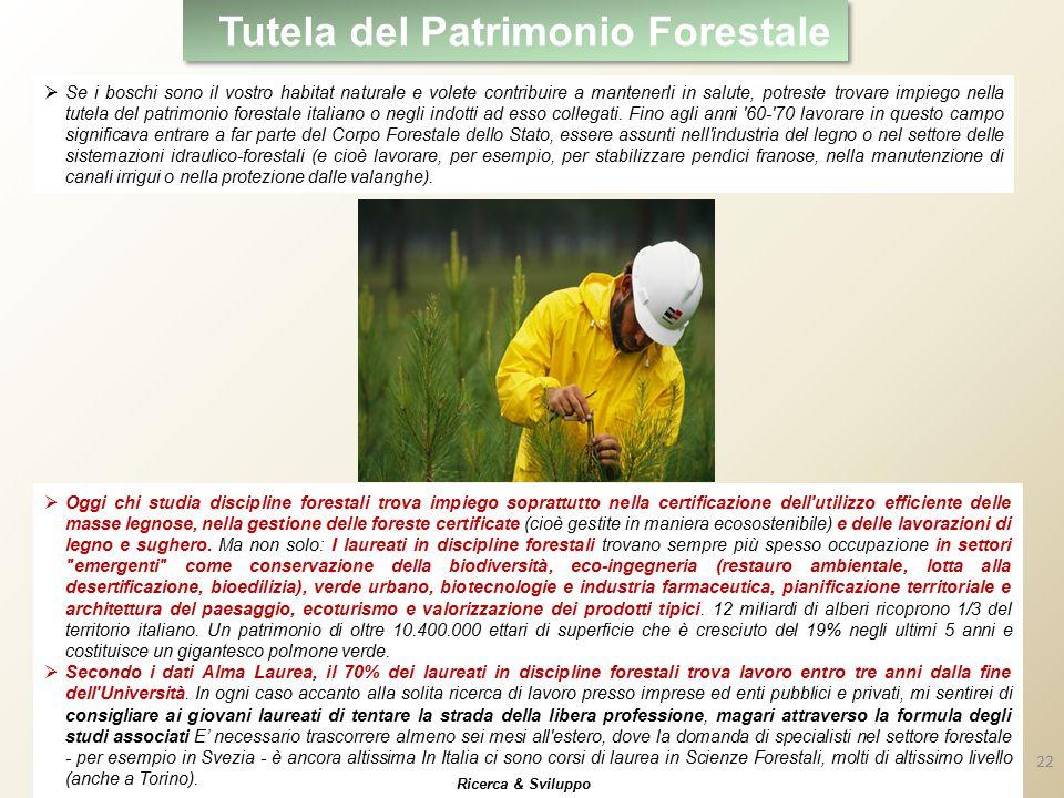Tutela del Patrimonio Forestale  Se i boschi sono il vostro habitat naturale e volete contribuire a mantenerli in salute, potreste trovare impiego nella tutela del patrimonio forestale italiano o negli indotti ad esso collegati.