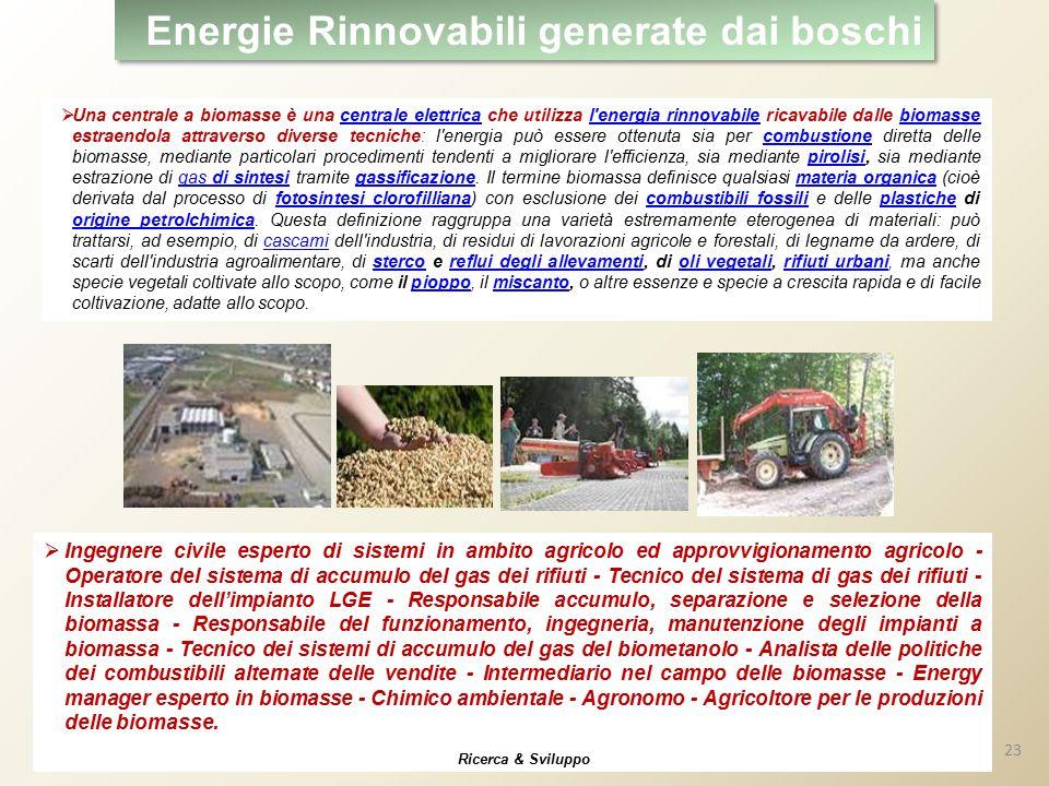 Energie Rinnovabili generate dai boschi  Una centrale a biomasse è una centrale elettrica che utilizza l'energia rinnovabile ricavabile dalle biomass