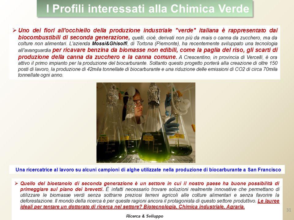 I Profili interessati alla Chimica Verde  Uno dei fiori all occhiello della produzione industriale verde italiana è rappresentato dai biocombustibili di seconda generazione, quelli, cioè, derivati non più da mais o canna da zucchero, ma da colture non alimentari.