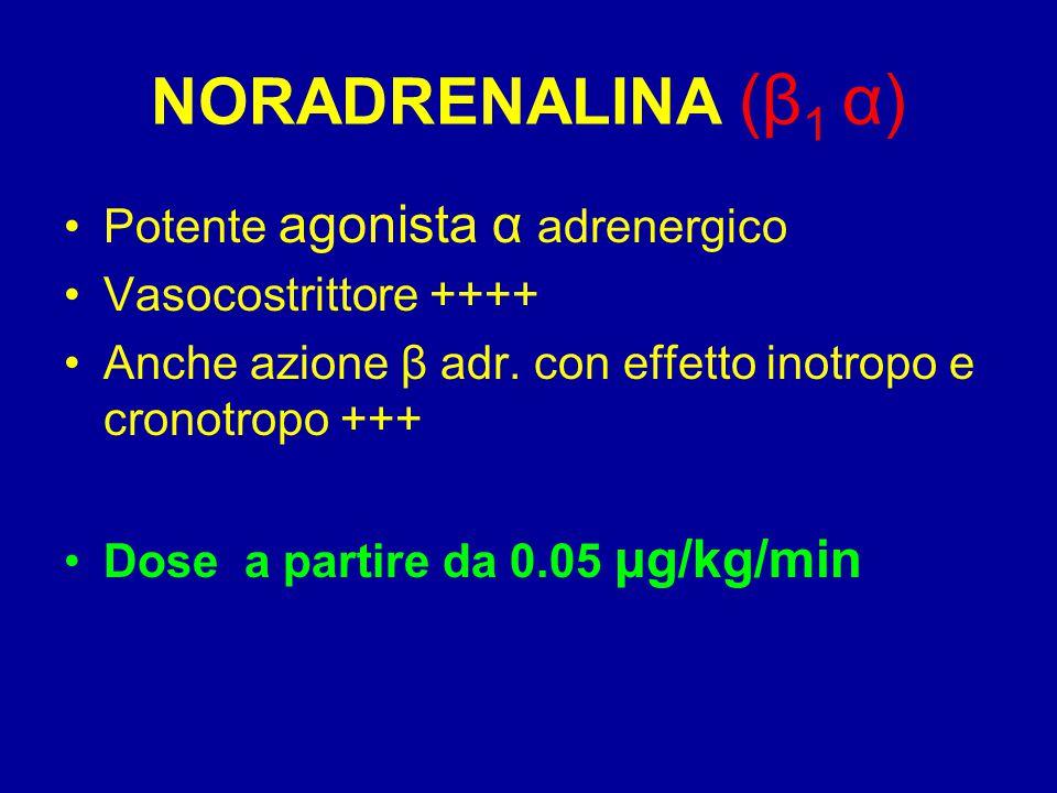 NORADRENALINA (β 1 α) Potente agonista α adrenergico Vasocostrittore ++++ Anche azione β adr. con effetto inotropo e cronotropo +++ Dose a partire da