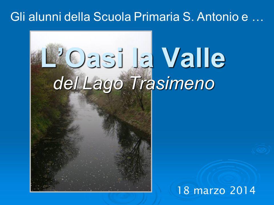 L'Oasi la Valle del Lago Trasimeno 18 marzo 2014 Gli alunni della Scuola Primaria S. Antonio e …