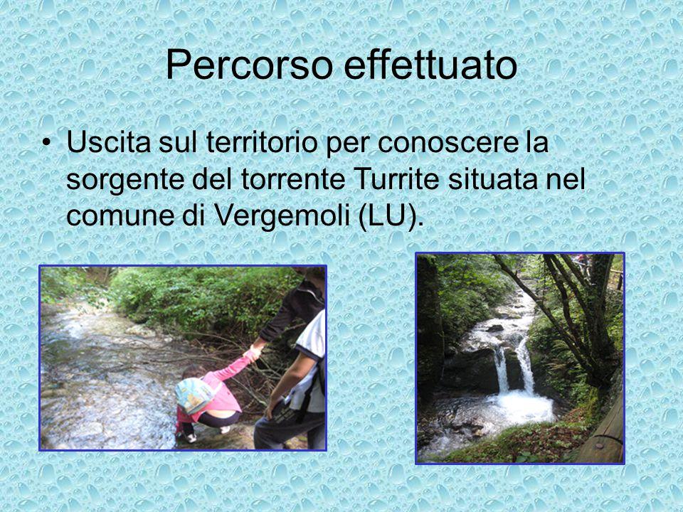 Percorso effettuato Uscita sul territorio per conoscere la sorgente del torrente Turrite situata nel comune di Vergemoli (LU).