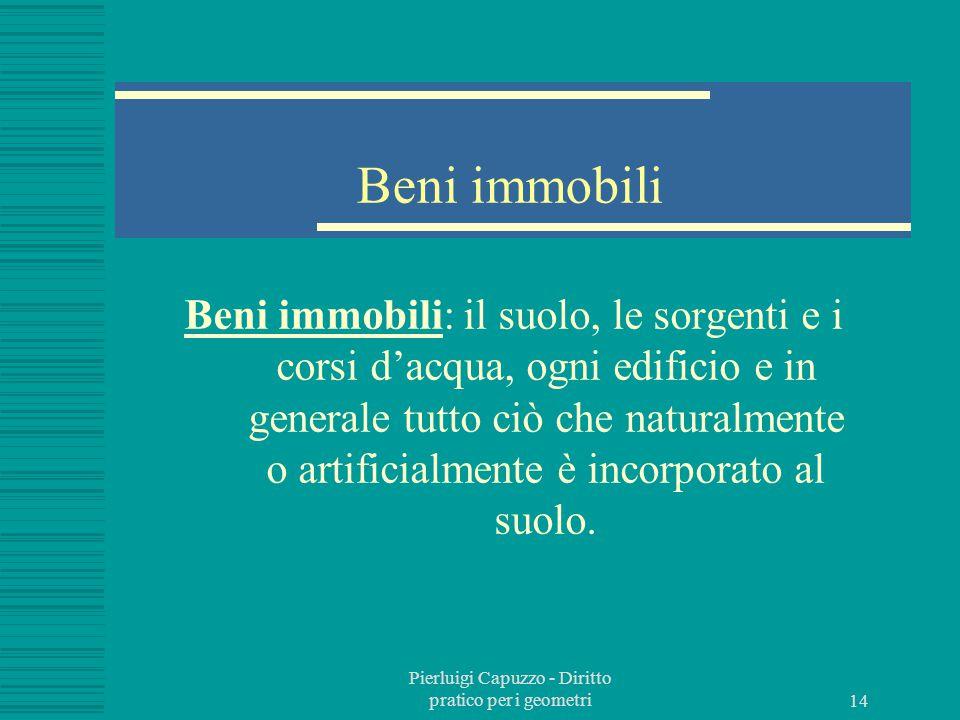 Pierluigi Capuzzo - Diritto pratico per i geometri 13 L'oggetto del diritto Oggetto dei diritti reali sono i beni.