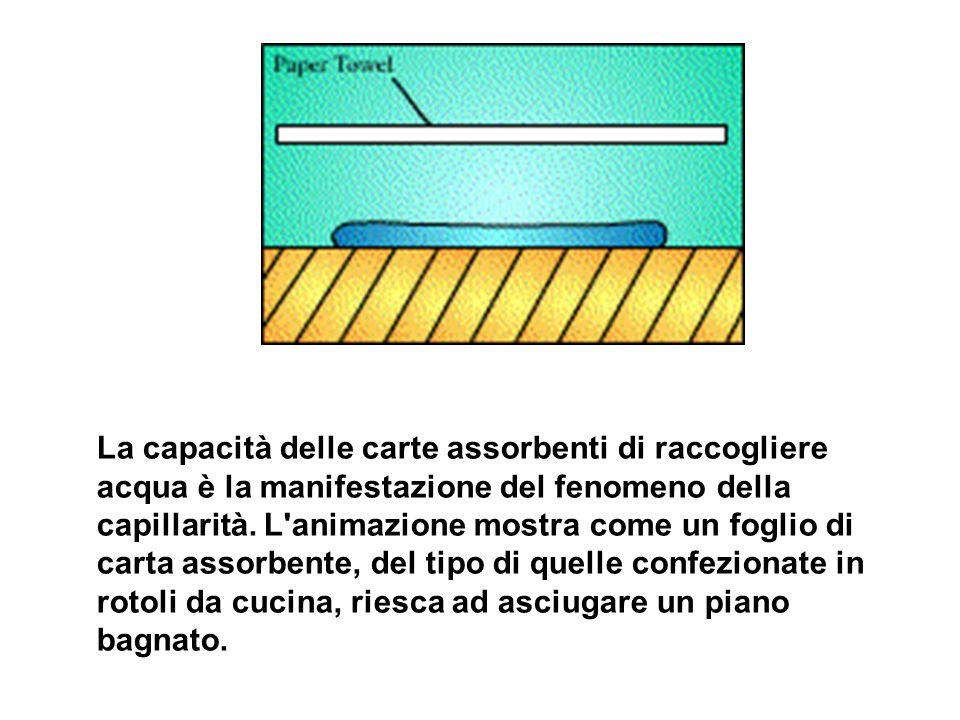 La capacità delle carte assorbenti di raccogliere acqua è la manifestazione del fenomeno della capillarità. L'animazione mostra come un foglio di cart