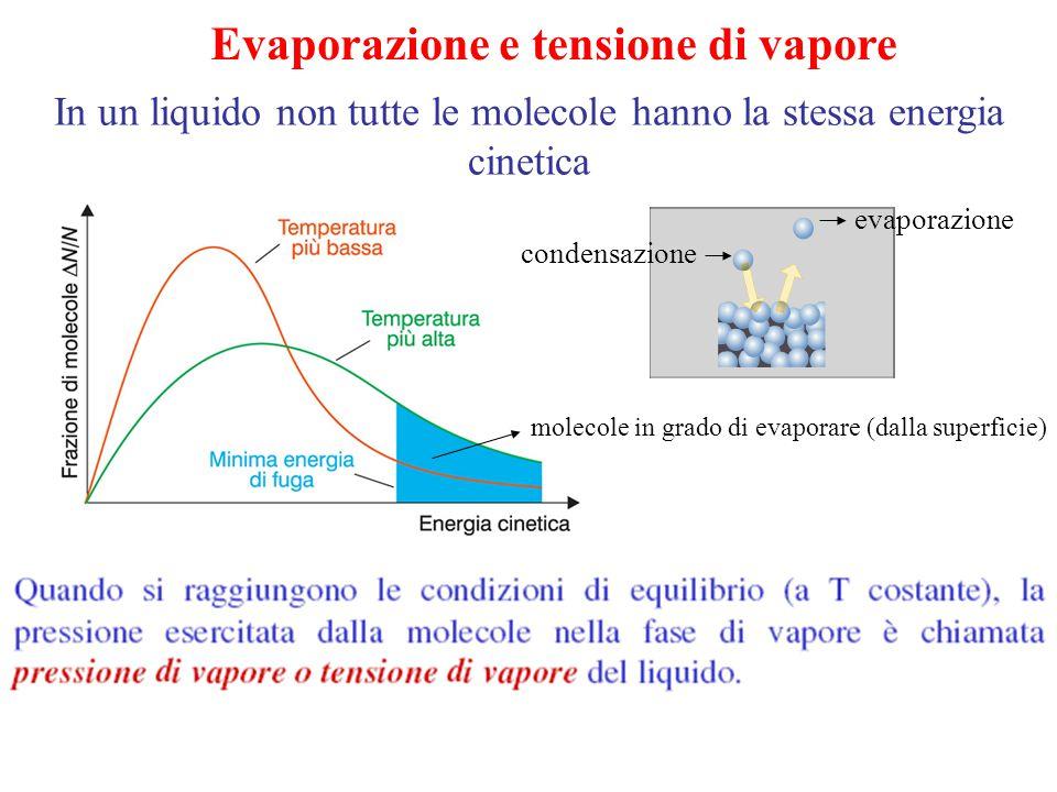 Evaporazione e tensione di vapore In un liquido non tutte le molecole hanno la stessa energia cinetica molecole in grado di evaporare (dalla superfici