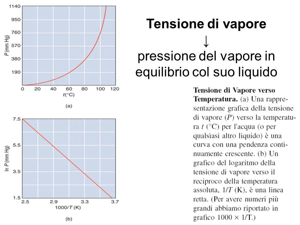 Tensione di Vapore verso Temperatura Tensione di vapore ↓ pressione del vapore in equilibrio col suo liquido