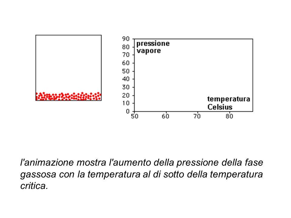 l'animazione mostra l'aumento della pressione della fase gassosa con la temperatura al di sotto della temperatura critica.