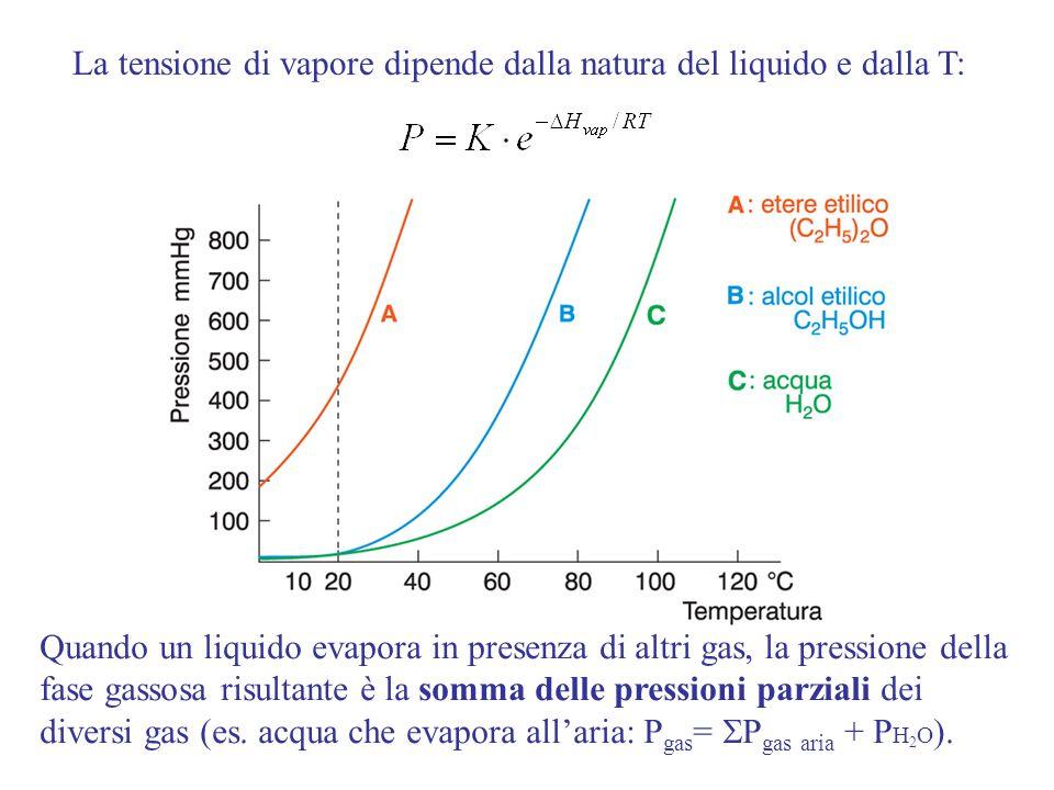 La tensione di vapore dipende dalla natura del liquido e dalla T: Quando un liquido evapora in presenza di altri gas, la pressione della fase gassosa