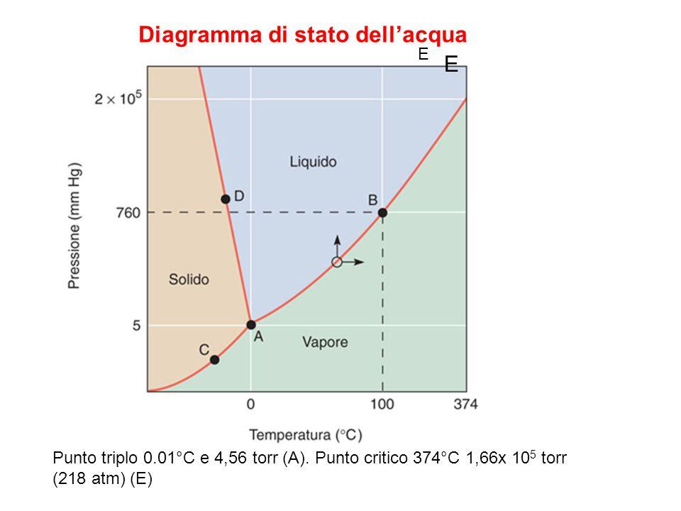 Diagramma delle fasi dell'acqua 5 Punto triplo 0.01°C e 4,56 torr (A). Punto critico 374°C 1,66x 10 5 torr (218 atm) (E) E E Diagramma di stato dell'a