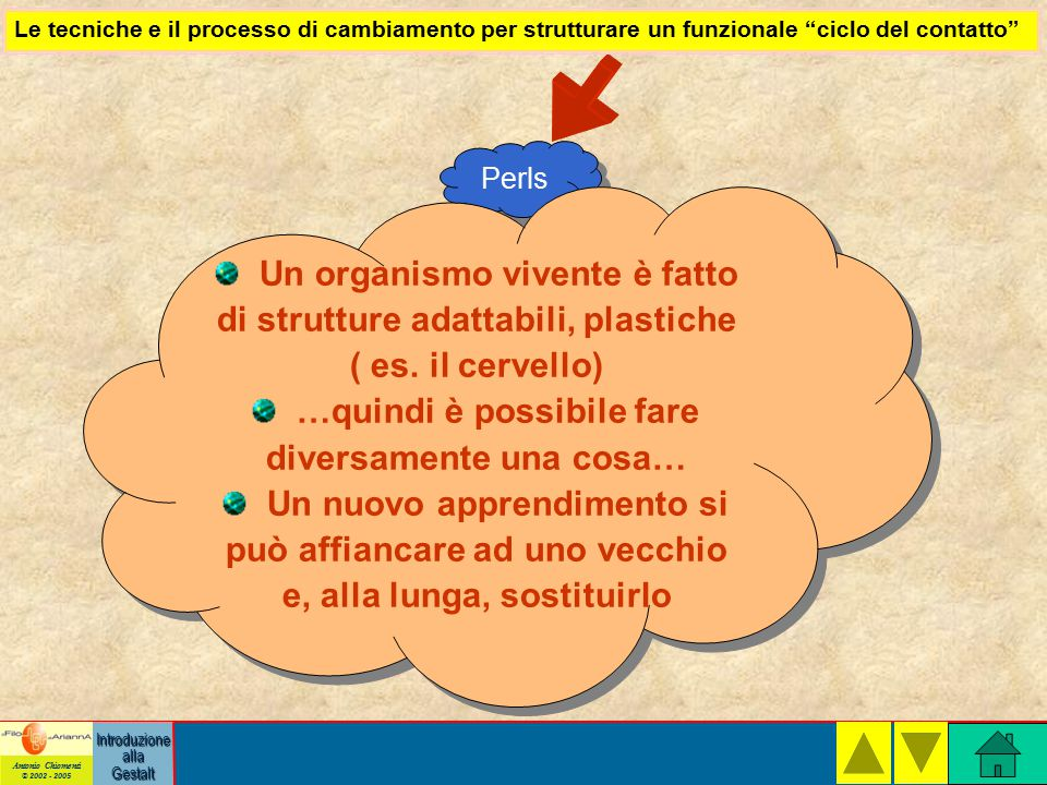 Antonio Chiomenti © 2002 - 2005 Introduzione alla Gestalt Perls Un organismo vivente è fatto di strutture adattabili, plastiche ( es.