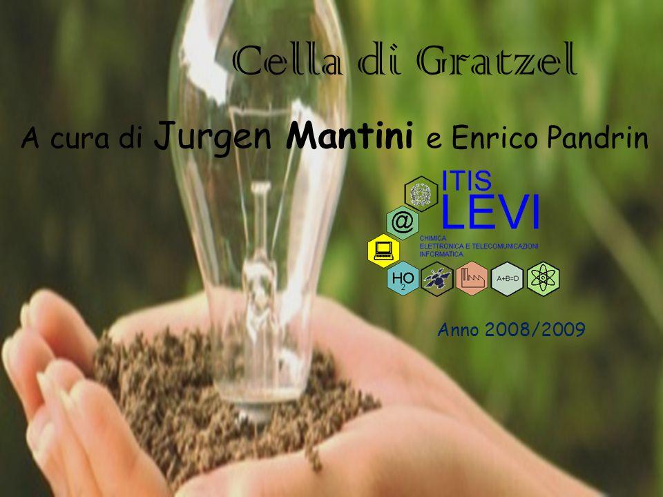 Cella di Gratzel Anno 2008/2009 A cura di Jurgen Mantini e Enrico Pandrin