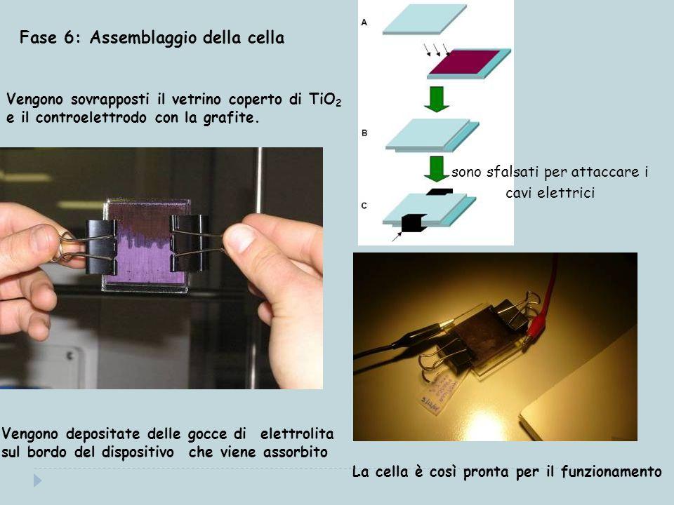 Fase 6: Assemblaggio della cella Vengono sovrapposti il vetrino coperto di TiO 2 e il controelettrodo con la grafite.