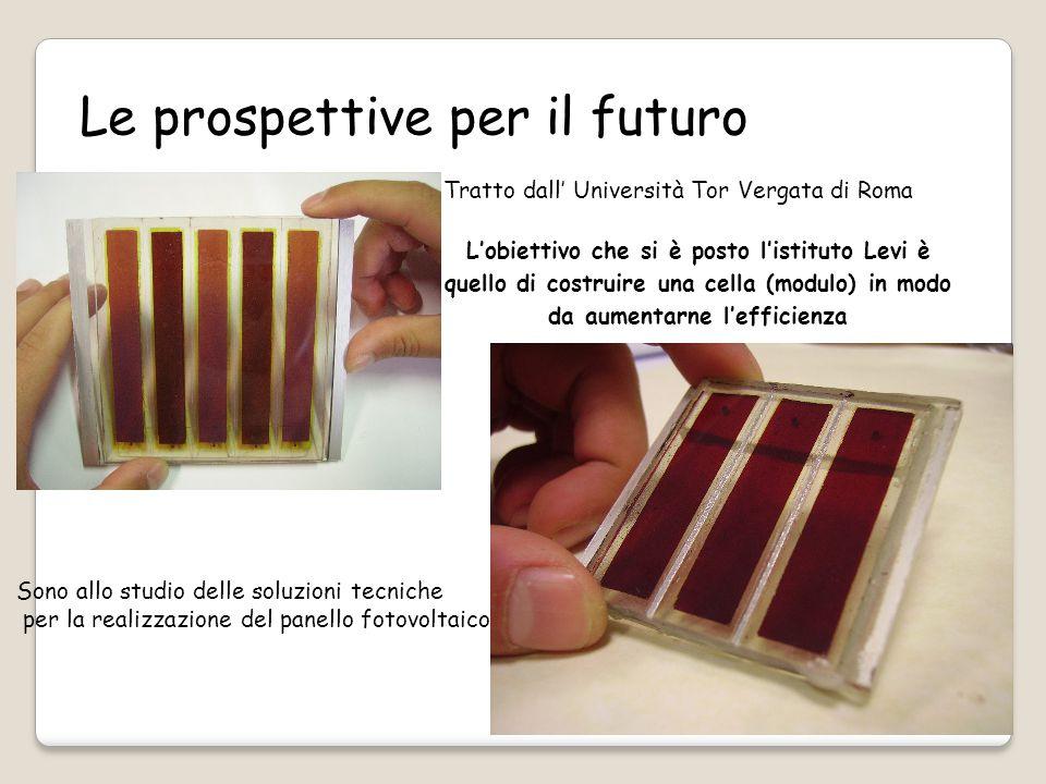Le prospettive per il futuro L'obiettivo che si è posto l'istituto Levi è quello di costruire una cella (modulo) in modo da aumentarne l'efficienza Sono allo studio delle soluzioni tecniche per la realizzazione del panello fotovoltaico Tratto dall' Università Tor Vergata di Roma