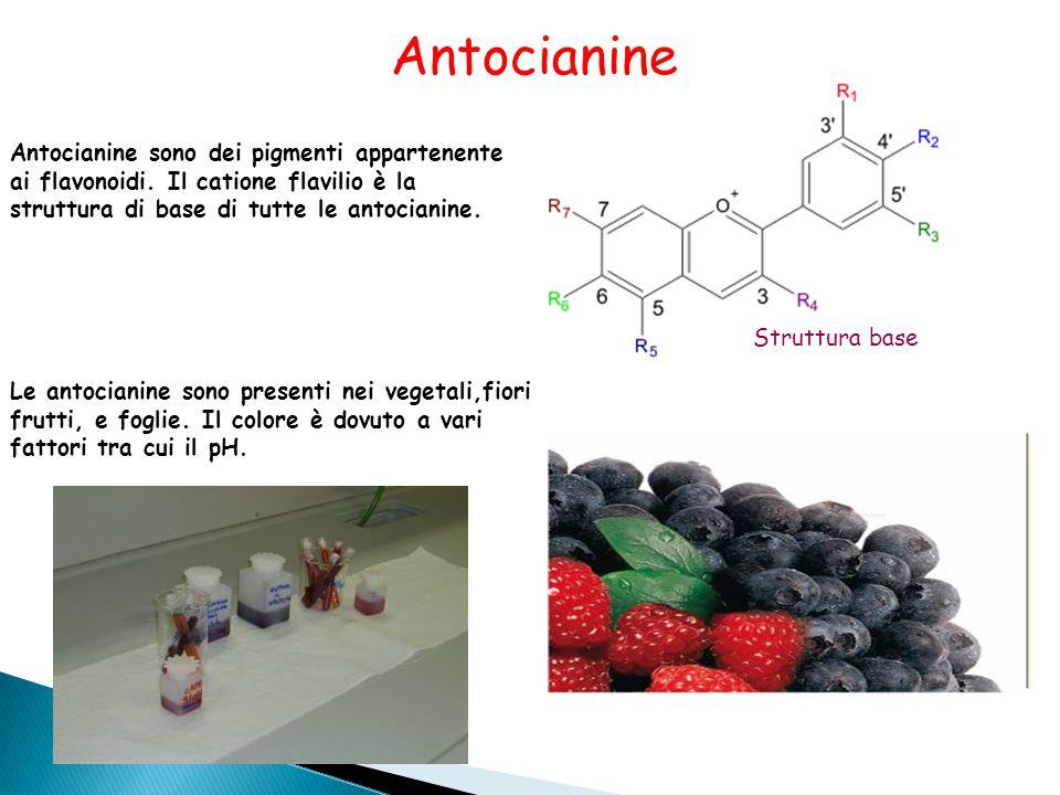 Antocianine sono dei pigmenti appartenente ai flavonoidi.